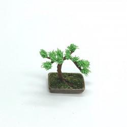 Бонсай в керамической низкой вазе, кукольная миниатюра