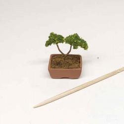 Бонсай, кукольная миниатюра