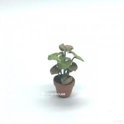 Растение в горшке, кукольная миниатюра 1:12