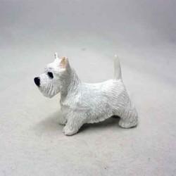 Собака Вест-хайленд терьер, миниатюра